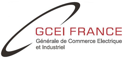 LOGO_GCEI_FRANCE (2)
